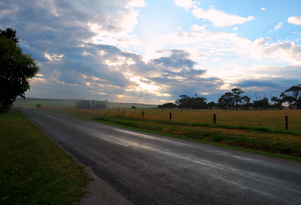 Gippsland country road