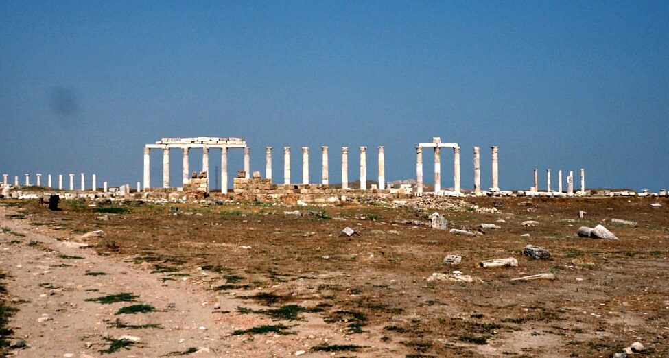 Row of columns from ancient Laodicea