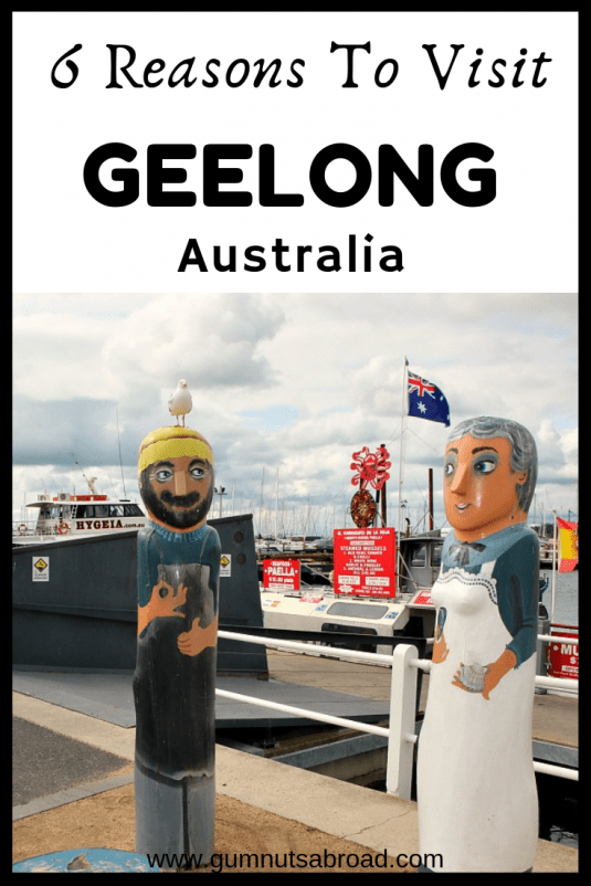 Geelong Australia Pin